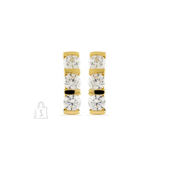 Siselly Kullaga kaetud hõbekõrvarõngad
