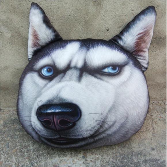 Husky - koeranäoga padi