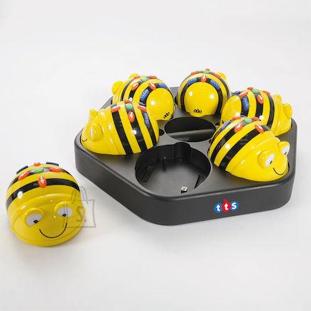 Bee-Bot 6 Mesimummu ja laadimisalus