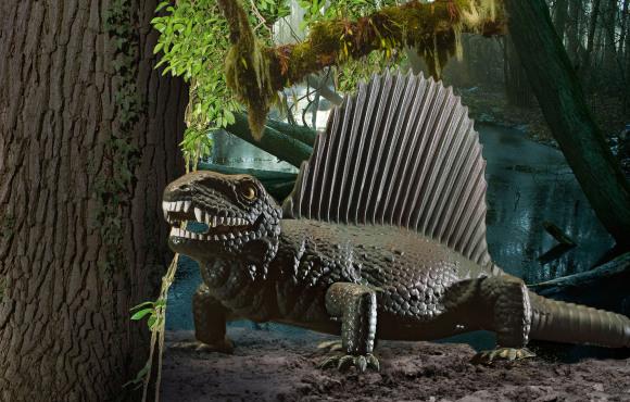 Revell Revell dinosaurus Dimetrodon 1:13