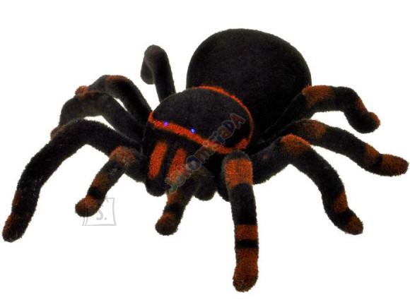 Raadioteel juhitav ämblik Black Widow