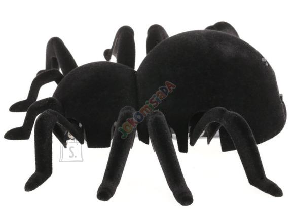 Raadioteel juhitav mööda seinu roniv ämblik