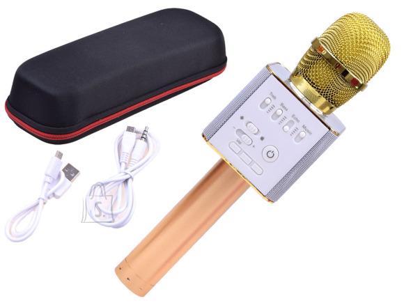 Juhtmevaba mikrofon lastele
