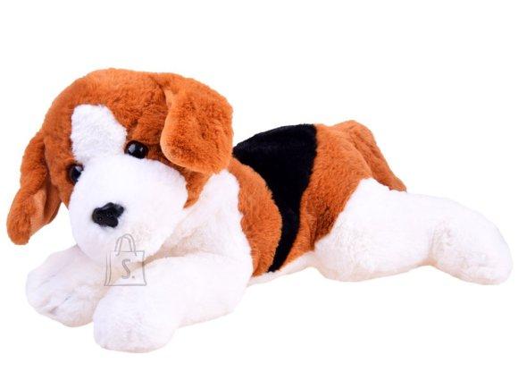 Pehme mängukoer Beagle