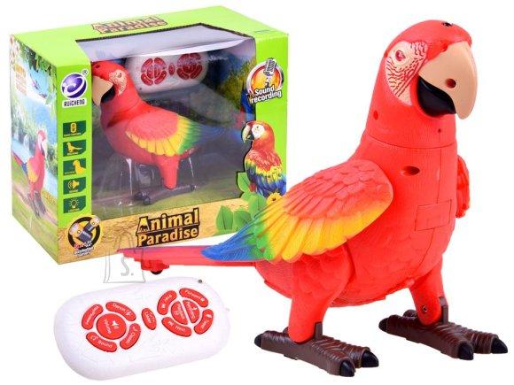 Raadioteel juhitav papagoi