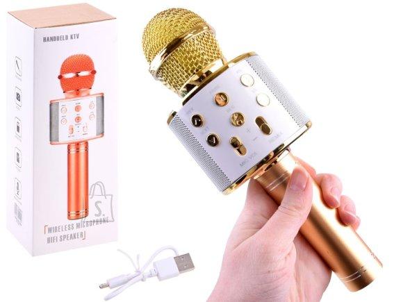 Wireless karaoke microphone speaker IN0136