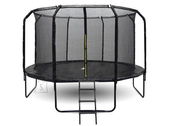SkyFlyer garden trampoline + 12FT 366cm ladder