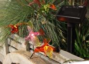 Päikesepaneeliga LED valguskett Linnud