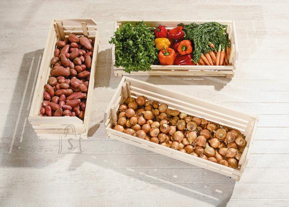 Hoiukastide komplekt Vegetables