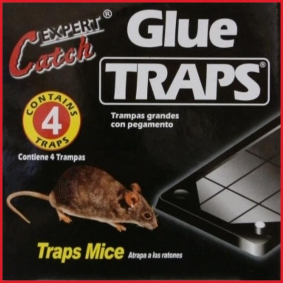 Glue traps