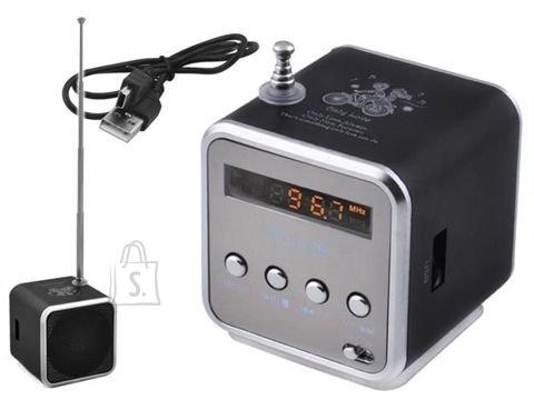 FM mini radio