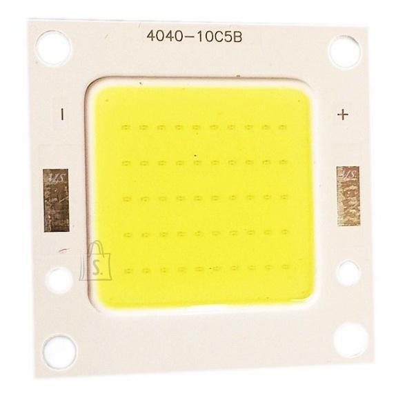 20W LED COB moodul KÜLM VALGE 4040-10C5B