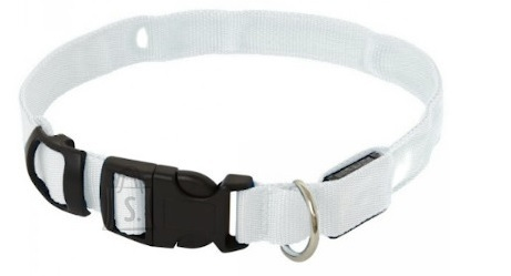 Koera LED kaelarihm S kuni 38CM Valge