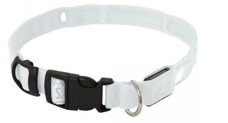Koera LED kaelarihm XL kuni 68CM Valge