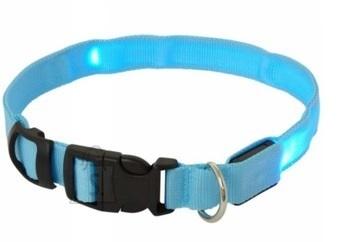 Koera LED kaelarihm L kuni 59CM Sinine