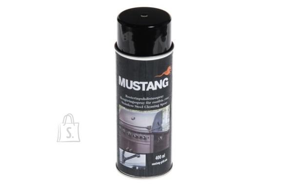 Mustang puhastusvahend roostevaba terasele