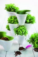 Keter istutuspott IVY PLANTER, valge/roheline