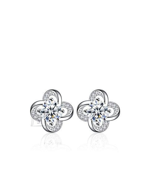 OiOi Särava tsirkoonidest lillega kõrvarõngad