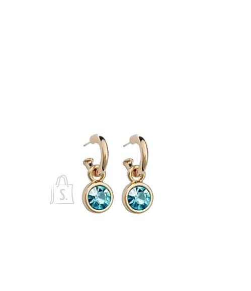 OiOi Helesinise kristalliga klassikalised kõrvarõngad
