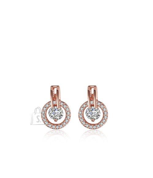 OiOi Luksusliku säraga tsirkoonidest kõrvarõngad