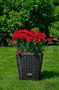 Bello Giardino lillepott 30 cm