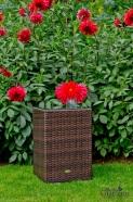 Bello Giardino laud aeda, terrassile