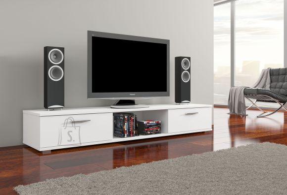 TV- ja meediaalus Aridea
