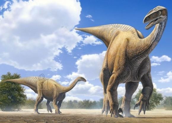 Castorland Puzzle 120 Plateosaurus 13050