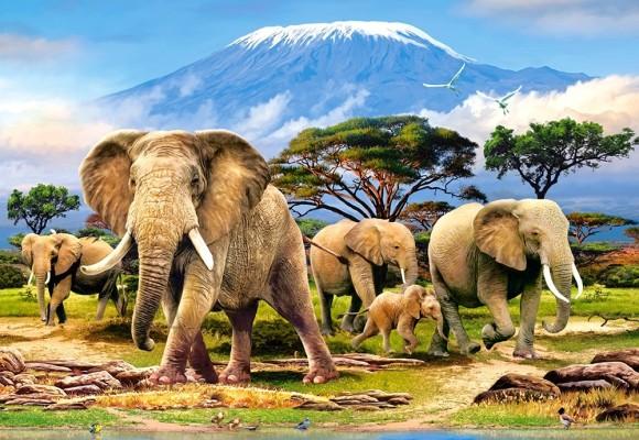 Castorland Puzzle 1000 Kilimanjaro Morning 103188