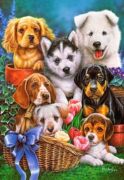 Castorland 104048. Puzzle 1000 Puppies