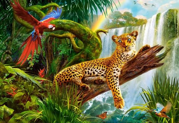 Castorland 104093. Puzzle 1000 Resting Leopard