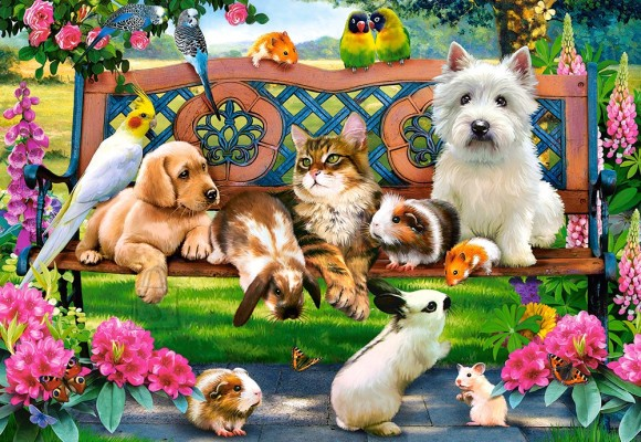 Castorland Puzzle 1000 Pets in the Park 104406