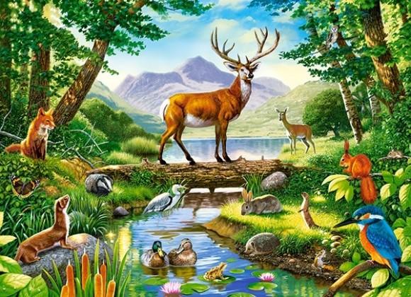 Castorland Puzzle 300 Woodland Harmony 030408