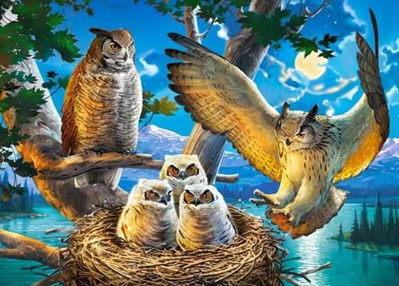 Castorland 18437. Puzzle 180 Owl Family