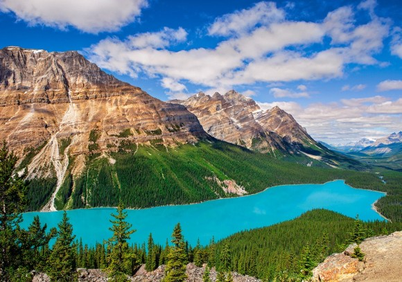 Castorland 53056. Puzzle 500 Peyto Lake, Canada