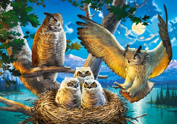 Castorland 53322. Puzzle 500 Owl Family