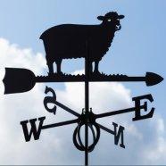 Tuulelipp Lammas