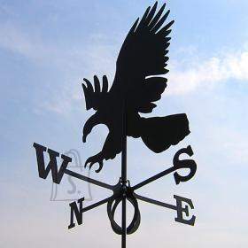 Tuulelipp Kotkas