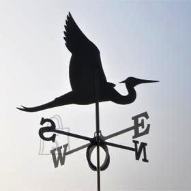 Tuulelipp Haigur