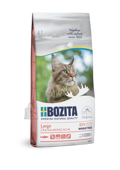 Bozita Large Wheat Free Salmon kassitoit 2kg