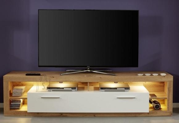 Trendteam Tv-alus ROCK valge läige / tamm, 200x44xH48 cm