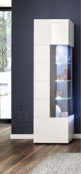 Trendteam Vitriinkapp TOKYO valge läige / tumehall, 57x37xH200 cm, LED