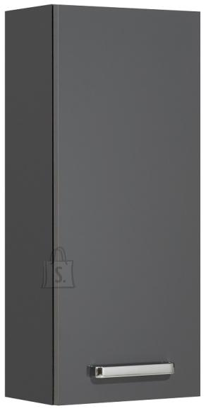Pelipal Seinakapp MAINZ antratsiit läikega, 30x20xH70 cm