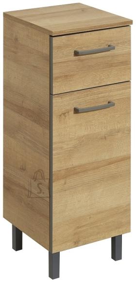 Pelipal Vannitoakapp RÜDESHEIM tamm, 30x33xH81 cm