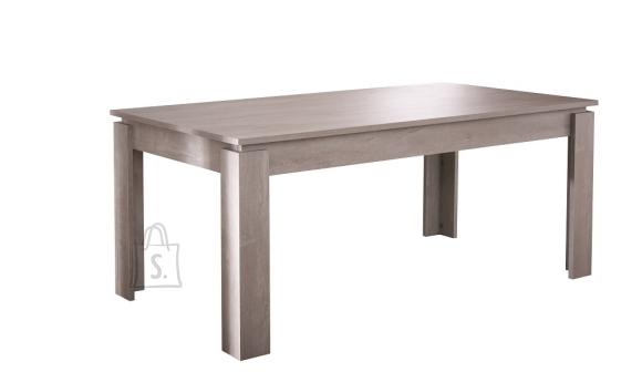 Demeyere Söögilaud SEGUR 170x90xH77 cm, tamm