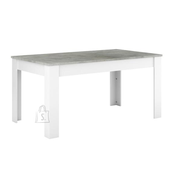 Demeyere Söögilaud FLORIDE hall / valge, 160x90xH77,2 cm