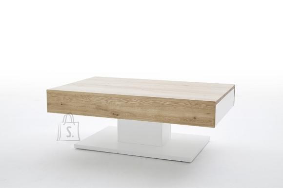 MCA Diivanilaud LANIA valge / tamm, 110x70xH40 cm