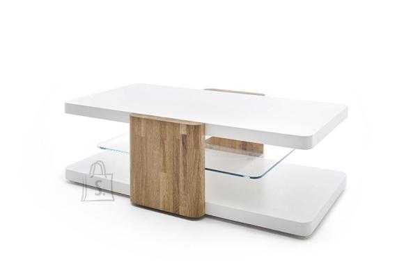 MCA Diivanilaud SANNE valge / tamm, 120x70xH38 cm