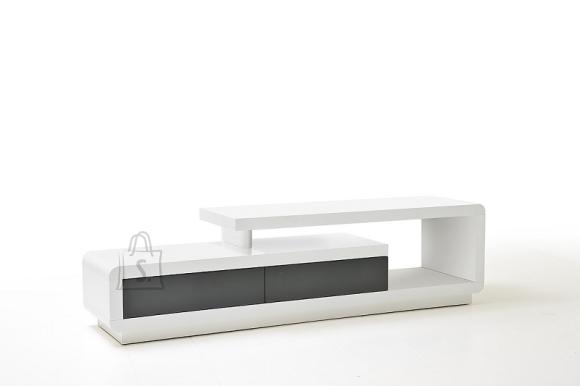 Tv-alus CELIA valge / hall, 170x40xH45 cm