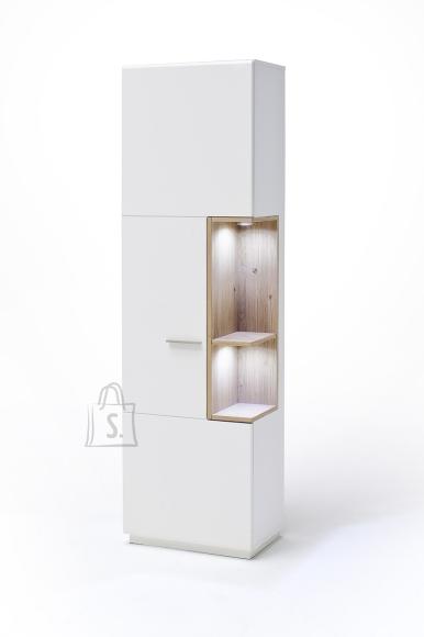MCA Vitriinkapp CESINA valge / tamm, 60x37xH206 cm